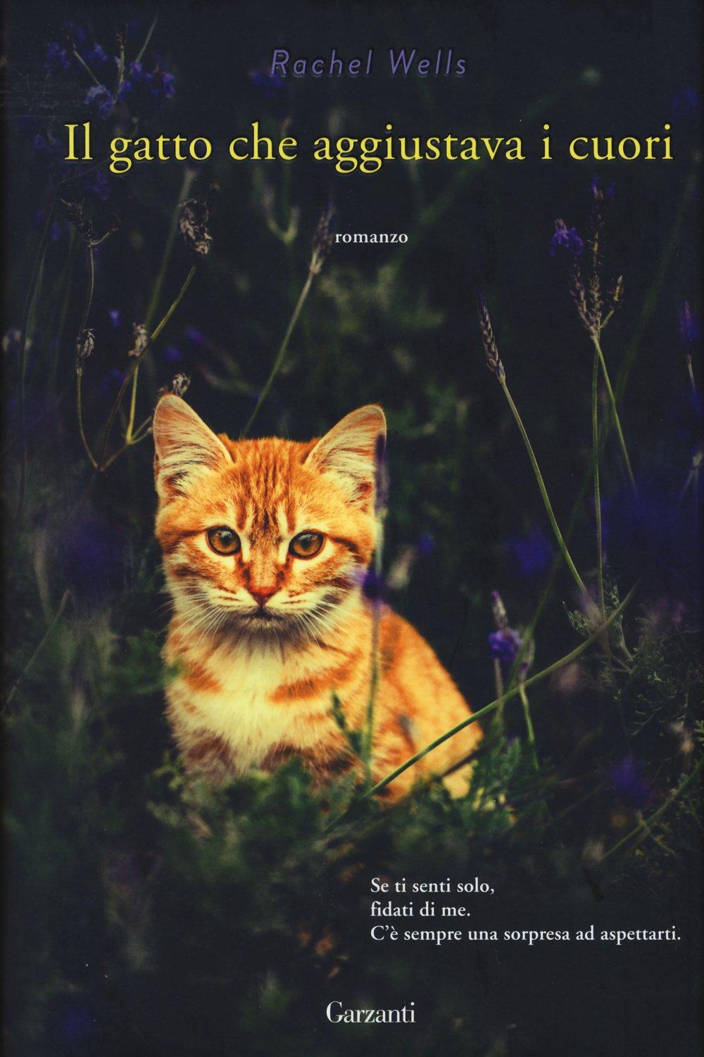 Il gatto che aggiustava i cuori,