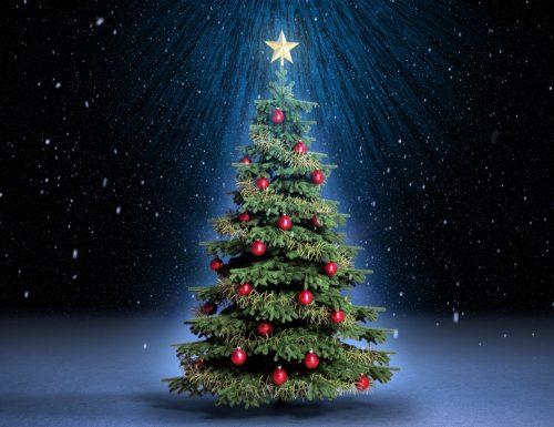 L'albero di Natale: storia, origini e curiosità di un simbolo di festa