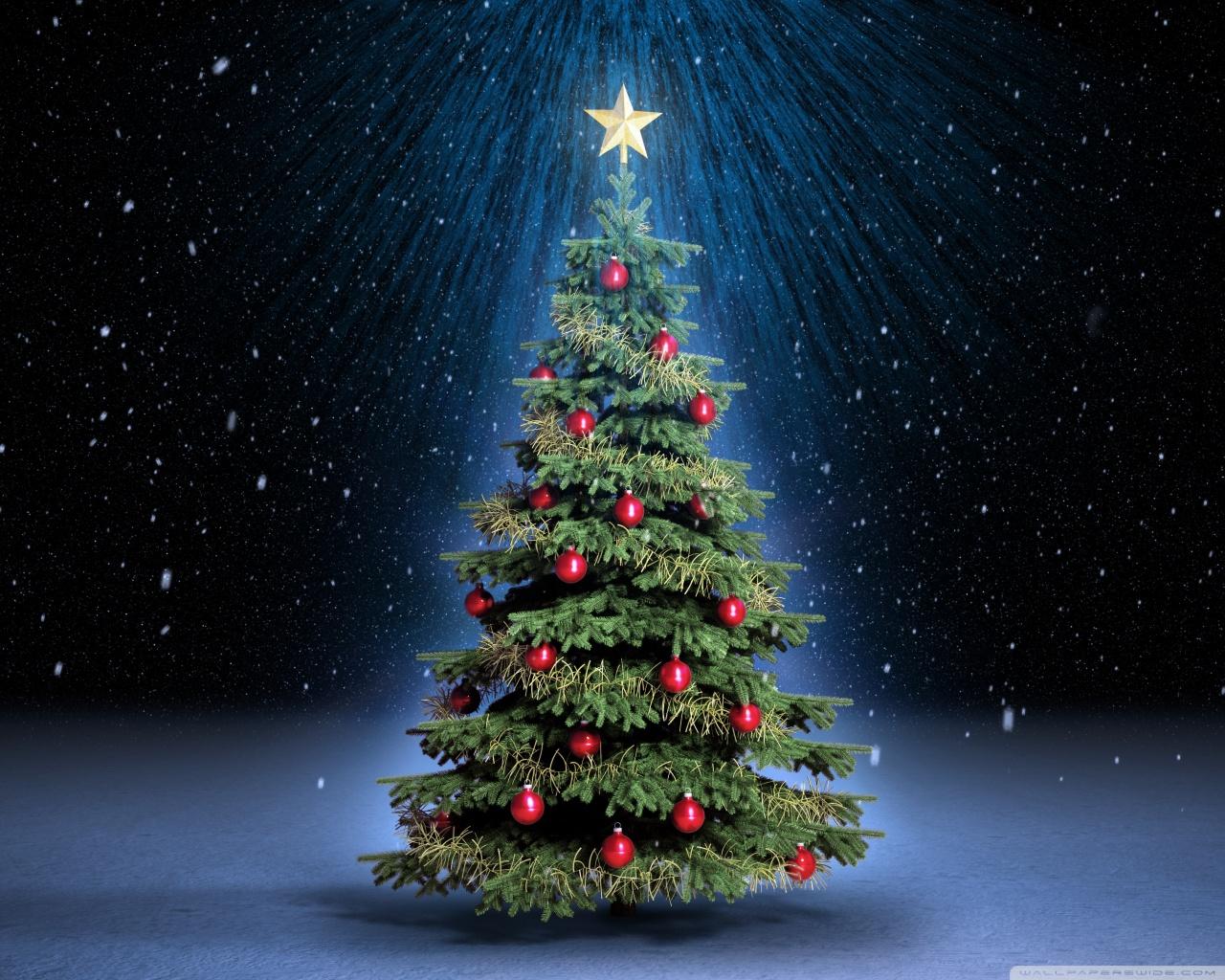 Albero Di Natale Origini.L Albero Di Natale Storia Origini E Curiosita Di Un Simbolo Di Festa A Cura Di Teresa Anania