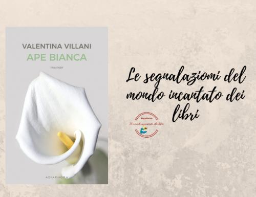 Ape bianca di Valentina Villani Segnalazione