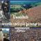 Woodstock : Il concerto rock più famoso della storia