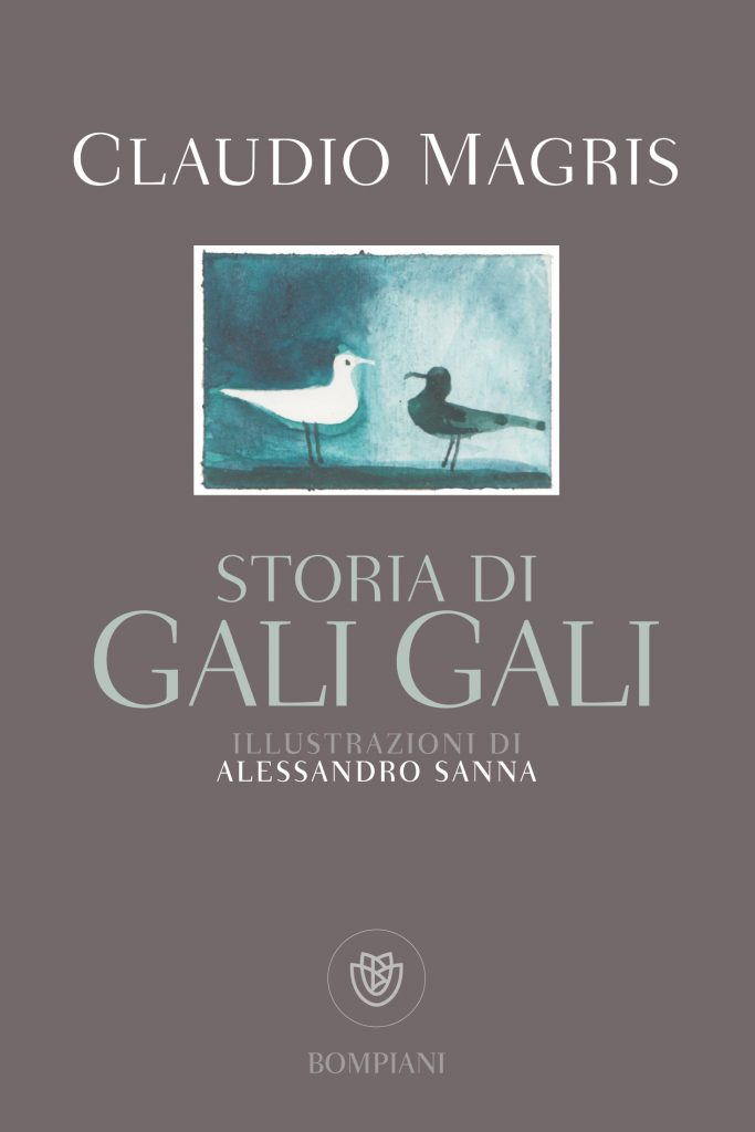 Storia di Gali Gali