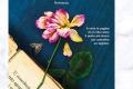 """Segnalazione libro in uscita: """"I Fiori Nascosti nei Libri"""", di Silvia Montemurro"""