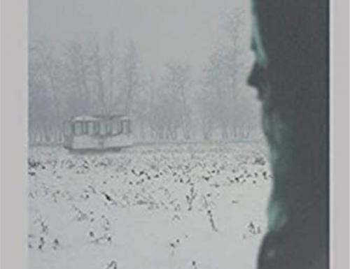 Il treno fantasma e altri racconti del parallelo di Gloria Silipigni