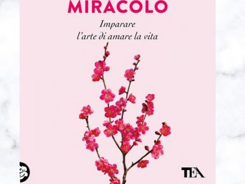 """""""Ogni giorno un miracolo"""", di Alberto Simone"""
