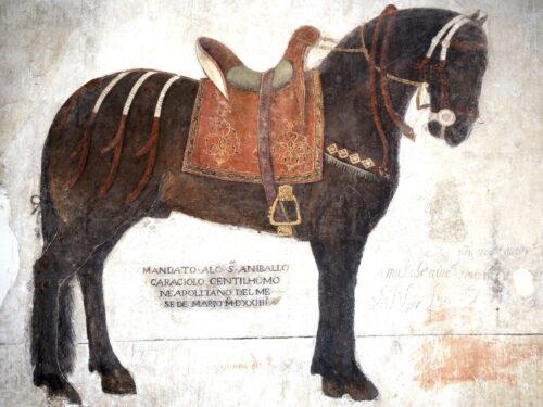 La Favolosa storia del Cavallo Napolitano. A cura di Lucio Sandon